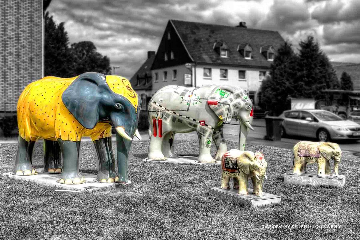 elefanten_729_30_31